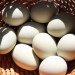 Online Marketing Secrets – Secret #28 – Don't Put All Your Eggs In One Basket
